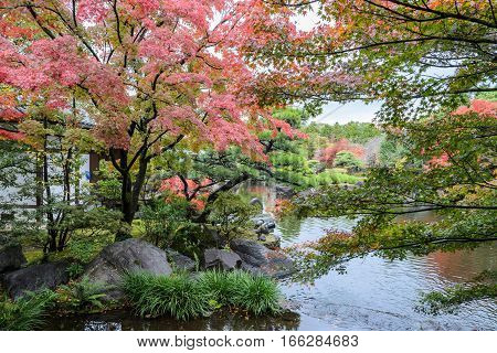 Autumn scenery with red maple trees and pond of Kokoen garden in Himeji Japan