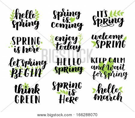 Vector Set Of Hand-written Spring Brush Lettering. Hello Spring. Spring Collection Black Ink And Gre