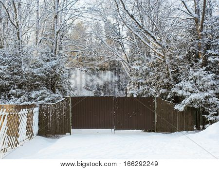Winter trees behind the fence. Winter night scenery and countryside views of the sunset.