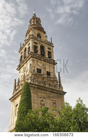 Cordoba (Andalucia Spain): courtyard of the medieval cathedral known as mezquita-catedral with various trees. Belfry