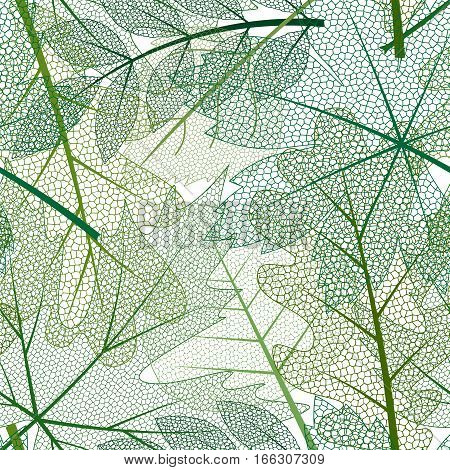 vector seamless background with colored skeleton leaves