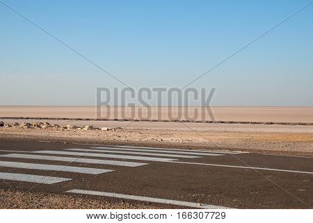 Road with crosswalk and horizon line in Sahara Desert