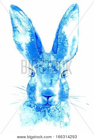 Hare. Wild animal image. Watercolor hand drawn illustration.