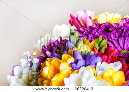 Bouquet of flowers. Romantic postcard background wishes. Valentine's day. Slight light point.