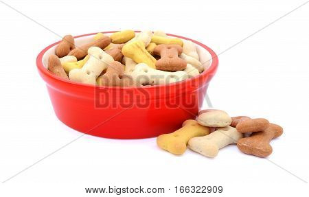 Dry Dog Food In A Red Bowl, Biscuits Spilled Beside