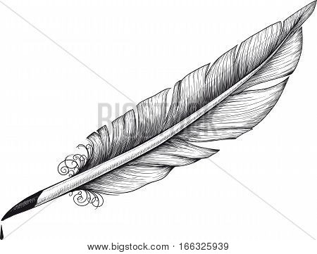 detail drawn Vintage quill for poets and writers. Ink drop is on separate layer and it can easily be removed