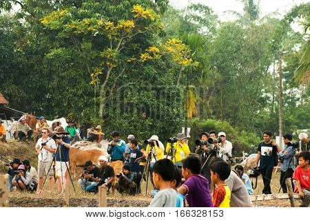 Batusangkar, Indonesia, August 29, 2015: Group of photographers at traditional bull race Pacu Jawi in West Sumatra, Indonesia on August, 2015