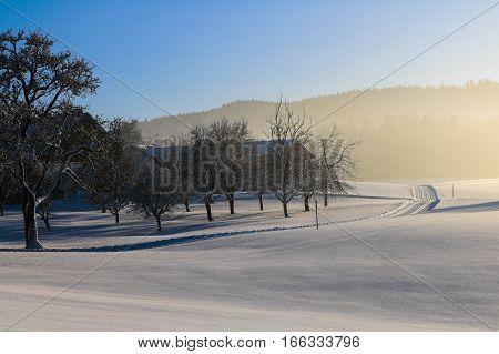 Austria, Landscape In Winter, Snow, Blue,sky
