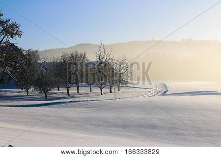 Austria landscape in winter snow blues ky