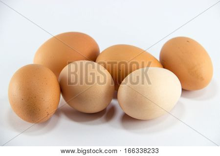 egg eggs food chicken healt protein organic