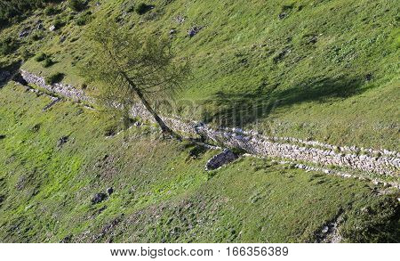 Ancient Trenches Of First World War Built By The Soldiers With S