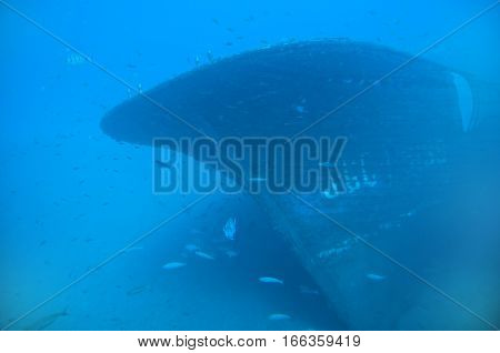 Underwater ship wreck and fishes - blue background