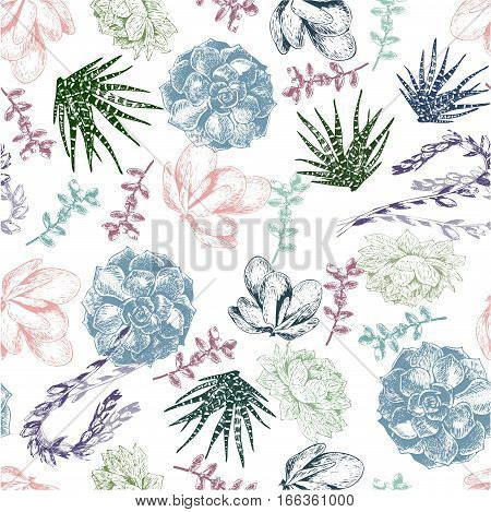 vector seamless pattern of succulents. Vintage colored engraved botanical art. Hand drawn elements. Use for wedding decor wrapping papper greeting card business fashion promotion.