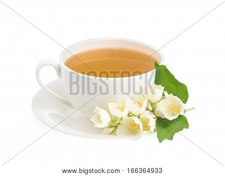 Cup Of Green Tea With Jasmine Flowers Isolated On White Background