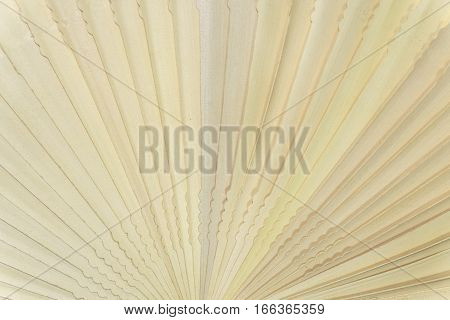 Chinese scented wood folding fan pattern texture