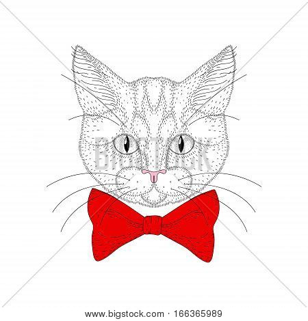 Vector cute cat portrait. Hand drawn hipster kitty head with red bow tie, cheerful fashion animal cartoon illustration for t-shirt print, kids greeting card, invitation for pet party.