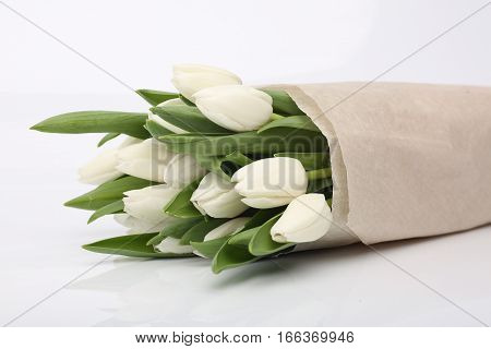 White tulips. The image depth of field