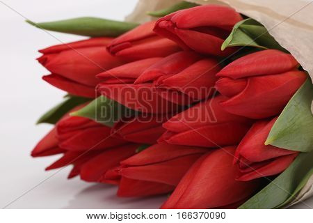 Bouquet of red tulips. Flowers for woman