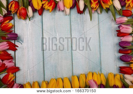 Frame of red roses on a blue wooden background