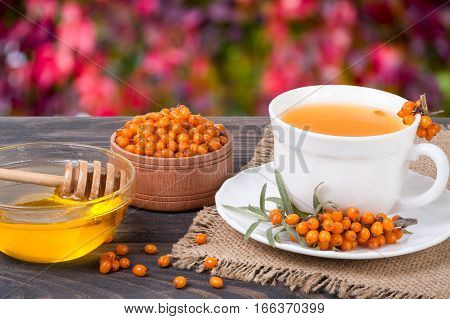 Tea of sea-buckthorn berries with honey on wooden table with blurred garden background.