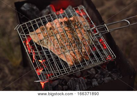 Close focus on grill mesh with big piece of raw salmon, peppered and salted, grilling on charcoal in outdoor camping