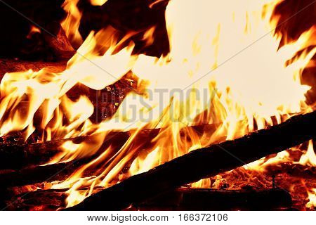 Close shot on fire flames at night