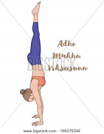 Women silhouette. Headstand yoga pose. Adho Mukha vrksasana. Vector illustration