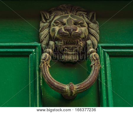 lion, door, green, knocker, decorative, detail, home, old, ancient