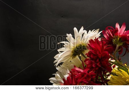 bouquet of colorful autumn flowers on a black background