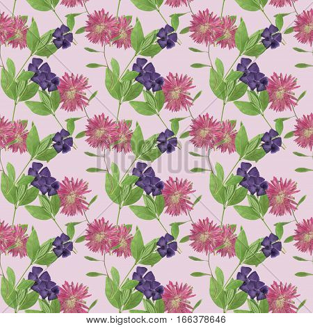 Periwinkle Aster Michaelmas daisy. Colorful texture of flowers. Seamless pattern for continuous replicate. Beautiful photo collage.