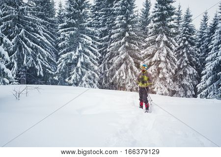 Man In Goggles And Snowshoes On The Edge Of Pine Forest