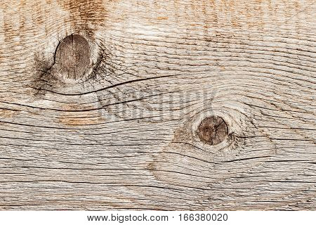 Close-up natural old wood texture with weathered crack lines, curves, swirls. Aged surface. Natural background. Detail of abstract grunge aged weathered cracked profile