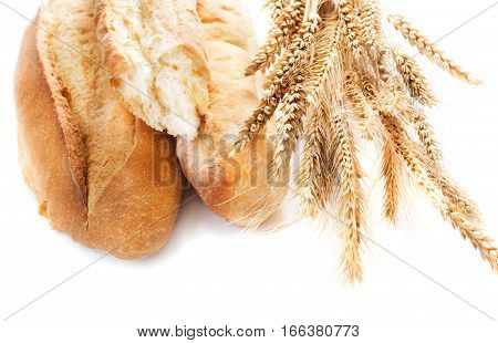 fresh bread with ear of wheat isolated on white background