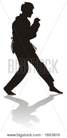 Silhouette Of Martial Arts