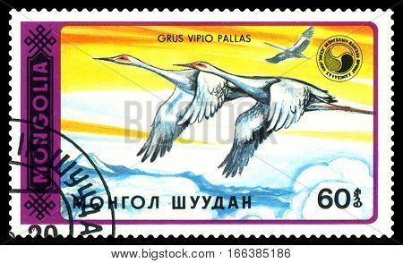 STAVROPOL RUSSIA - January 23 2017 : A Stamp sheet printed in Mongolia shows bird Grus Vipio Pallas series Grus circa 1990