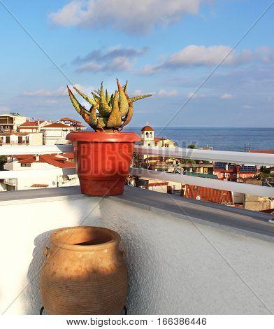 Beautiful Greek terrace with flowers Sarti Sithonia Chalkidiki