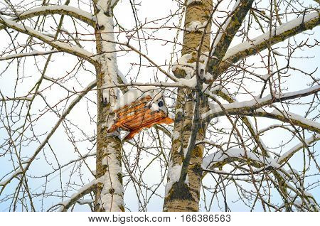 Modern Birdhouse suspended on chains on trees in snowy park