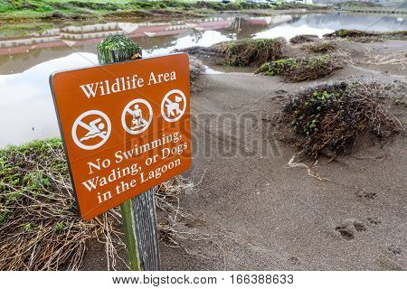 Sign telling people to not swim wade and no dogs in water area