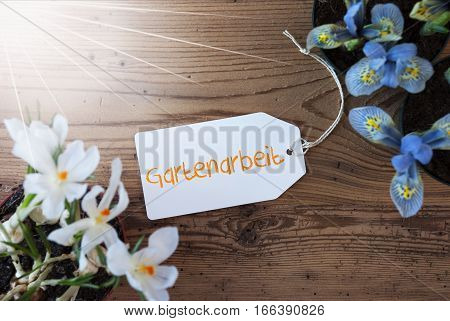 Sunny Label With German Text Gartenarbeit Means Gardening. Spring Flowers Like Grape Hyacinth And Crocus. Aged Wooden Background