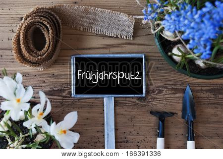 Sign With German Text Fruehjahrsputz Means Spring Cleaning. Spring Flowers Like Grape Hyacinth And Crocus. Gardening Tools Like Rake And Shovel. Hemp Fabric Ribbon. Aged Wooden Background