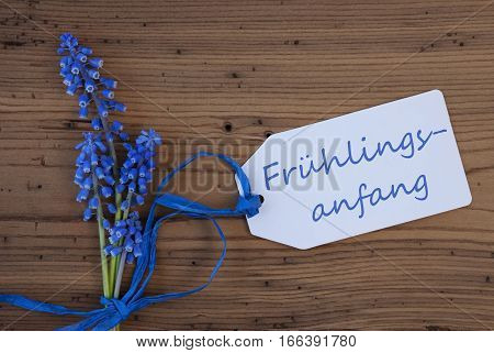 Label With German Text Fruehlingsanfang Means Beginning Of Spring. Blue Spring Grape Hyacinth With Ribbon. Aged, Rustic Wodden Background. Greeting Card For Spring Season