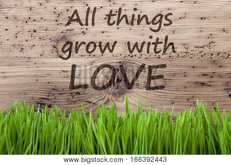 English Quote All Things Grow With Love. Spring Season Greeting Card. Bright Aged Wooden Background With Gras.