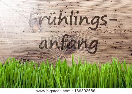 German Text Fruehlingsanfang Means Beginning Of Spring. Spring Season Greeting Card. Bright, Sunny And Aged Wooden Background With Gras.