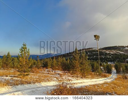 Snow way in tforest, on background colorful panorama