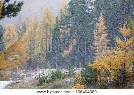 First snow on Lake Baikal, on background colorful landskape