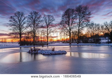Row Of Trees Behind A Frozen Pond