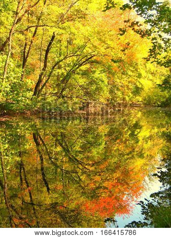 Colorful reflection in water. Shenandoah National Park.