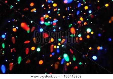 multitude of blurred Christmas Tree Holiday light bulbs
