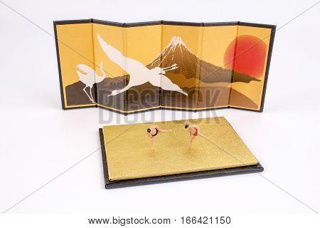Figure Of The Sumo Wrestler
