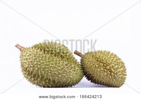 durian mon thong  is sweet fruit  tropical durian and  king of fruits durian on white background healthy durian fruit food isolated